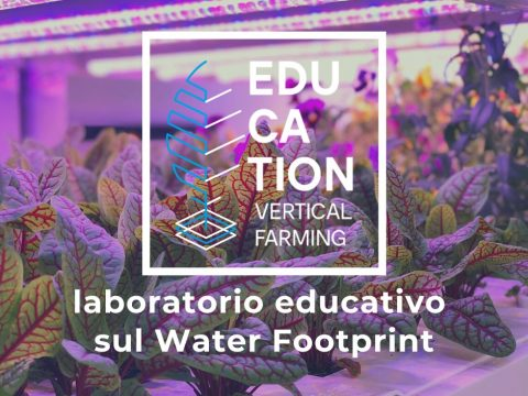 Vertical Farming Education